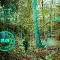 """""""Den Wald mit Künstlicher Intelligenz retten"""" – KIT Handy-App für nachhaltiges Waldmanagement"""