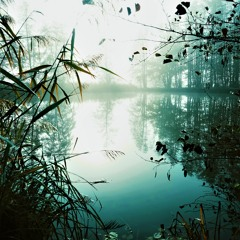 Strange Things Lie Below The Lake