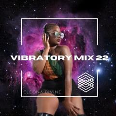 Vibratory Mix 22