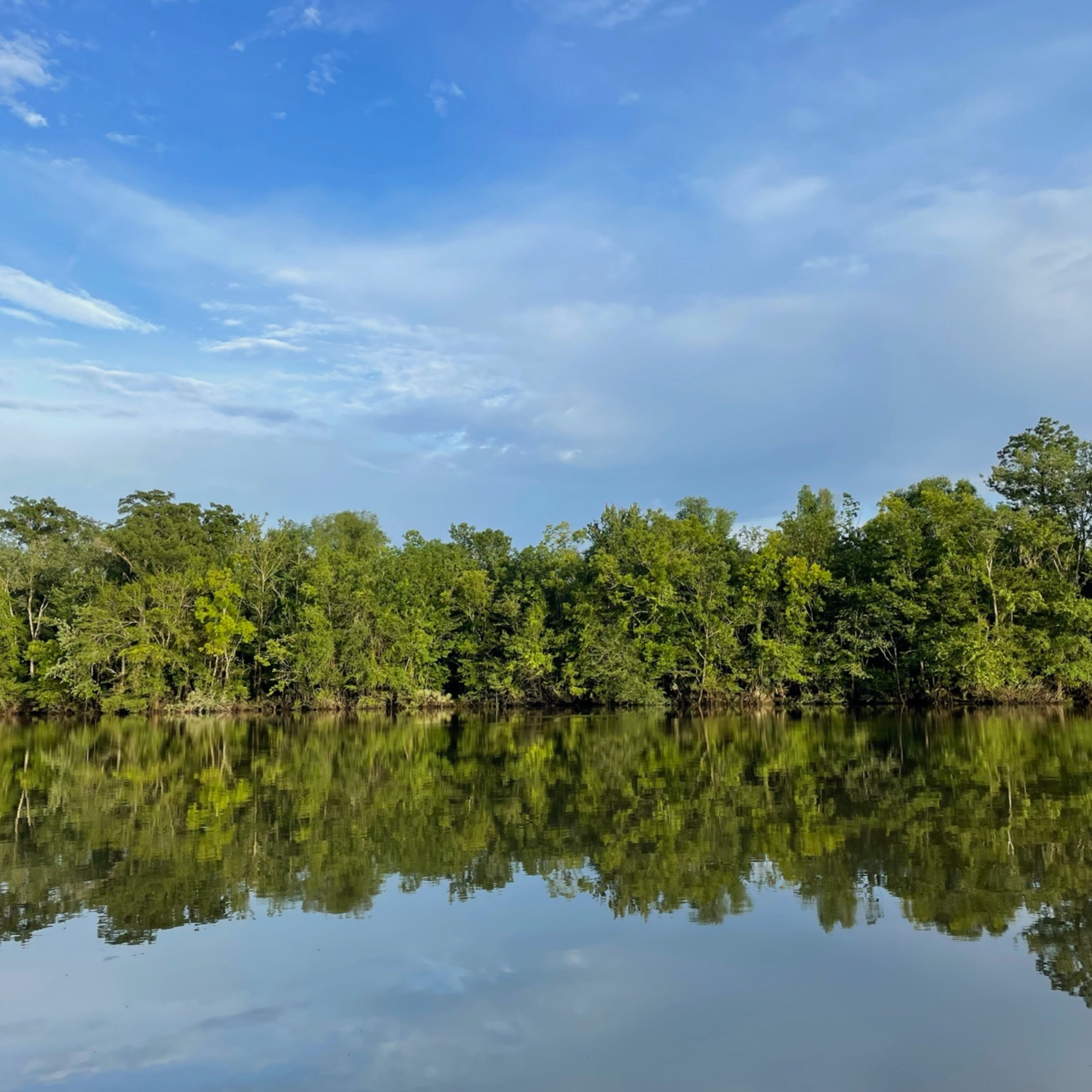 115. Live from the Bayou! Drowning & Submersion injuries