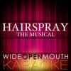 """It's Hairspray (From the Musical """"Hairspray"""") [Karaoke Version] [Original Broadway cast of Hairspray]"""
