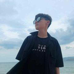 Lê Bảo Bình - Lá Xa Lìa Cành - Phi Nguyễn Remix [Full Version]