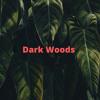 Download Dark Woods Mp3
