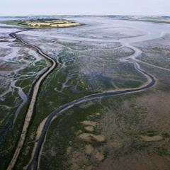 Essex Islands: Osea