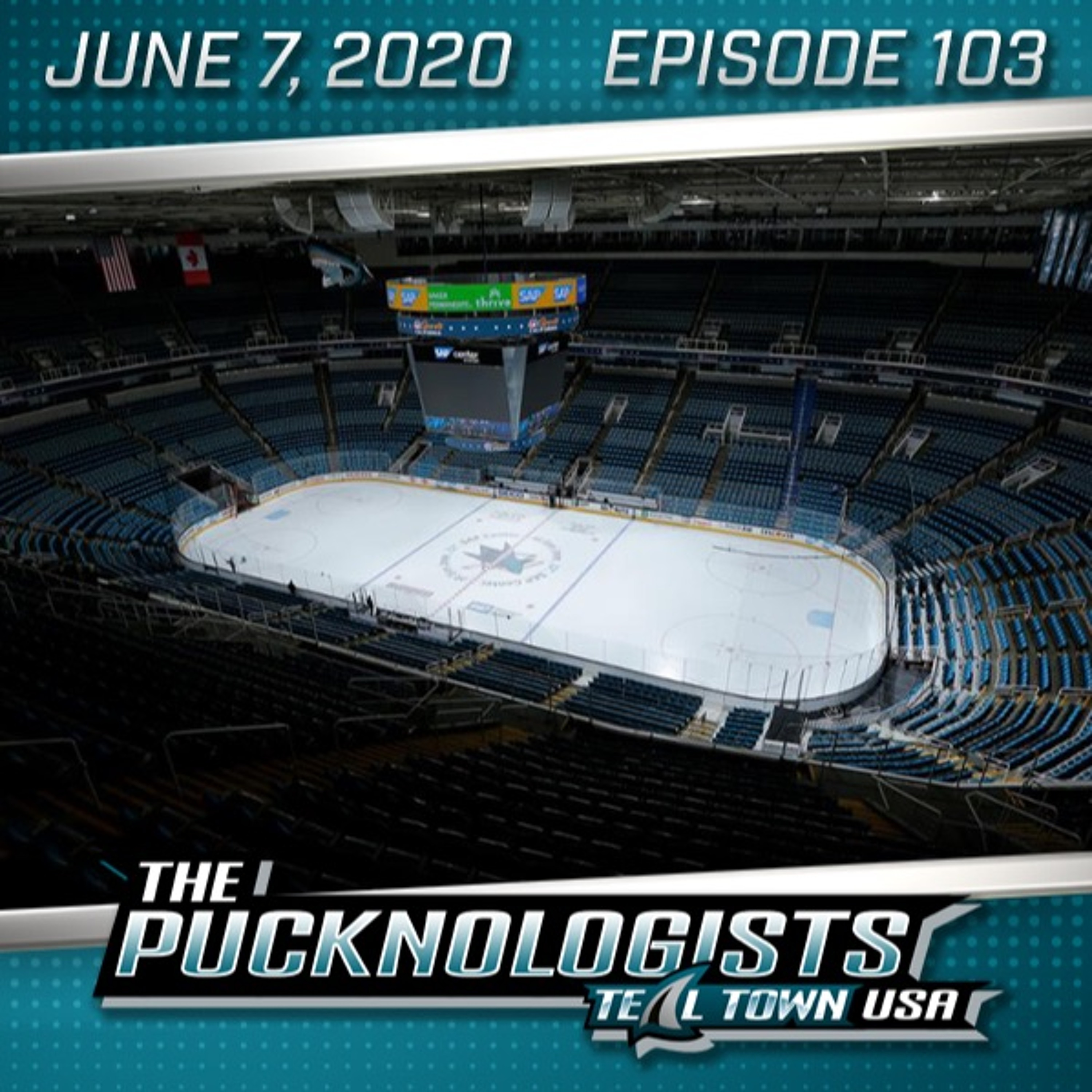 The Pucknologists 103 - NHL on Racism, Playoff Format Announced, Season Review