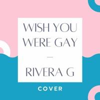 Wish you were gay | Billie Eilish Cover