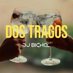 DOS TRAGOS [DJ BICHO 21']