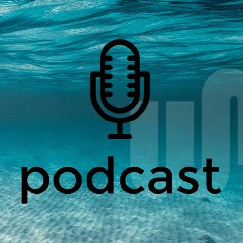 Podcast Flowmatics, Roel Voorbij