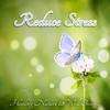 Reduce Stress (Calm Music)