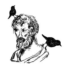 Euclid & Birds