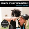 Download CIP 10: Sober Women & Volunteering with Dogs with Brittany Arneson Mp3