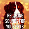 Relaxing Sounds for Your Pets