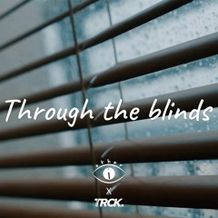 Through The Blinds (Other-i X TRCK.)