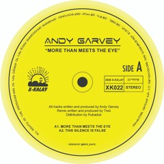 Andy Garvey - This Silence is False | XK022