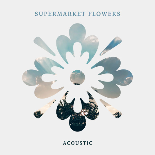 Supermarket Flowers (Acoustic) by Amber Leigh Irish | Free
