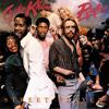 Turn (Album Version) [feat. Chaka Khan]