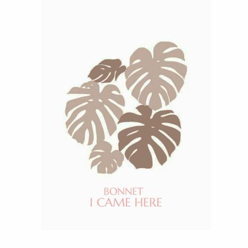 Bonnet - I Came Here