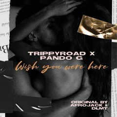 Trippyroad X Pando G - Wish You Were Here (RMX)