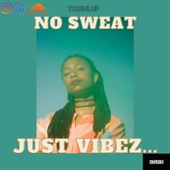 Chill Afrobeats  Mix 2021 -No Sweat, Just Vibez