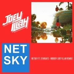 Netsky  ft. StarGate - Nobody (Joey iLLah Remix)