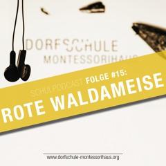 #15 Rote Waldameise - Dorfschule Montessorihaus