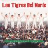 Pajaro En Mano (Album Version)