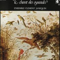 Amaury // Le   Chant   Des   Oyseaulx