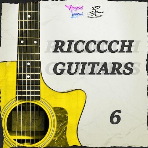 Regal Loops - Ricccch Guitars 6
