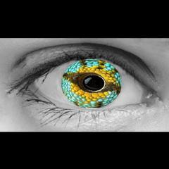Projecto Espaço Z - Olhos híbridos