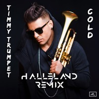 Timmy Trumpet - Cold (Halleland Remix)