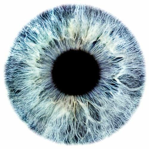 Exo Eyeball