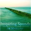 Zen Music (Water Sounds)