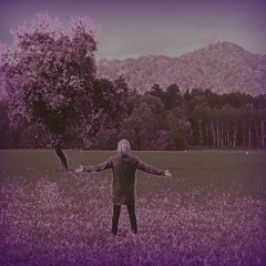 Wonderwall - Oasis (Cover) + Back Home (b2b; Mashup) - Sebastijan Ogrin (Acoustic Live)