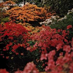 VOITAX MIX 042 | XDB