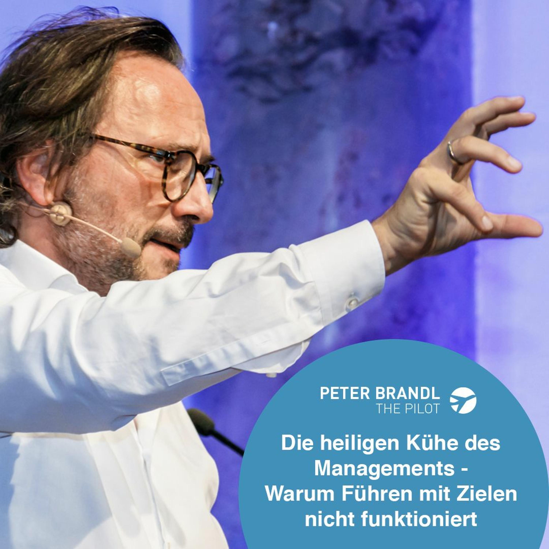 Remove Before Flight - Peter Brandl - Die heiligen Kühe des Managements