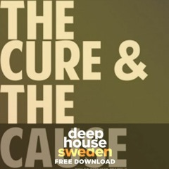 Free Download: Pippi Ciez ft Tracey K - The Cure & The Cause