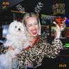 Download Клава Кока - Пьяную домой (leftwave remix) Mp3