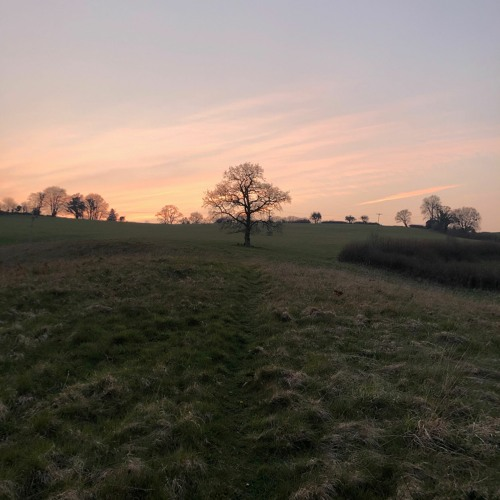 Fields by River Teign, Chagford, 27 March 2020
