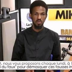 [LE VRAI DU FAUX]- La mission de l'ONU au Mali victime d'infox