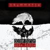 Белый Ворон (Zerx Remix)