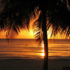 Download Jamaican Summer Mp3