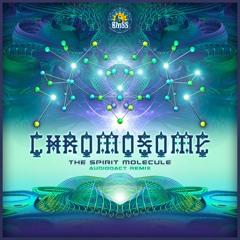 Chromosome - The Spirit Molecule (Audiodact Remix) - Downloadable!