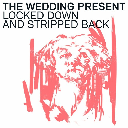 The Wedding Present -  You're Just A Habit That I'm Trying To Break