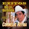 Que Te Vaya Bonito (Original Mix)