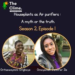 House Plants as air purifiers : A myth or the truth?