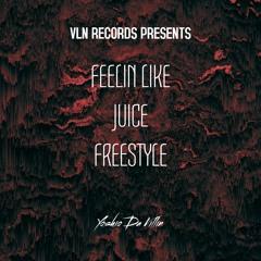 VLN RECORDS PRESENTS FEELIN LIKE JUICE FREESTYLE