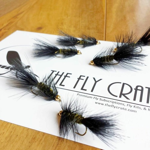 96 The Fly Crate, Nathaniel Treichler, Denver Colorado