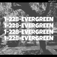Lil Poppa -  1-228 Evergreen