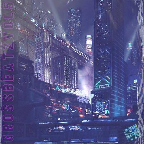 Gross Beatz Vol. 5 - MRhythmizer Preset Bank