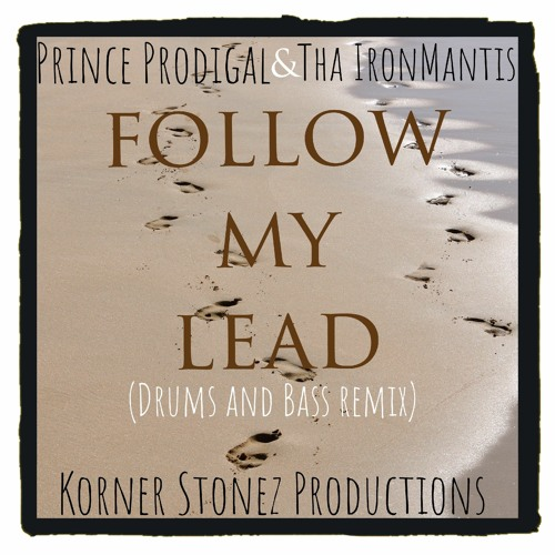 Follow My Lead (feat. Prince Prodigal and Tha IronMantis)[ Drum and bass remix]